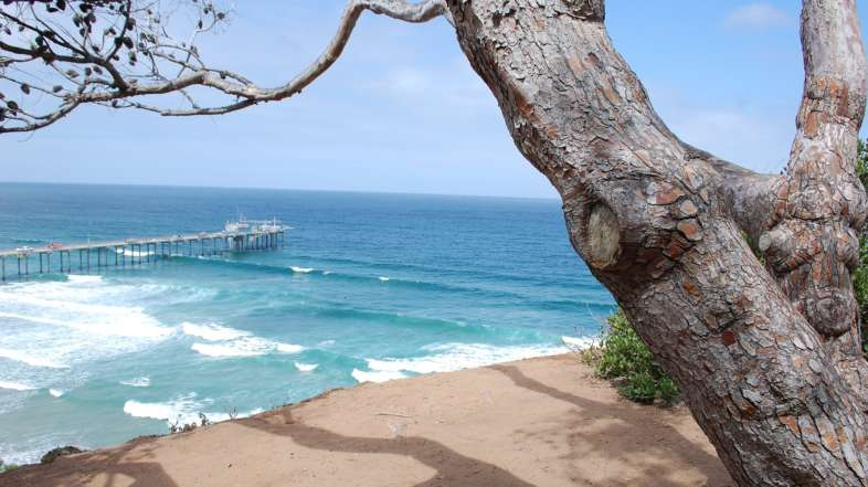 The 10 Best Beaches in San Diego