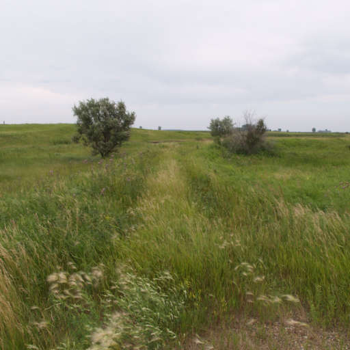 RV Parks in North Dakota That Are Worth a Visit