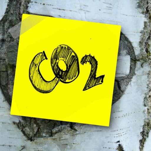 Three Simple Ways to Reduce Carbon Footprint